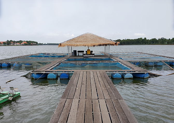 Aquaculture Water Quality Measurements